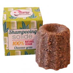 Festes Shampoo gegen fettendes Haar
