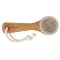 Gesichtbürste aus Buchenholz und Rosshaar