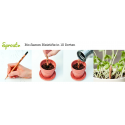 Samenbleistift Sprout in 10 Sorten